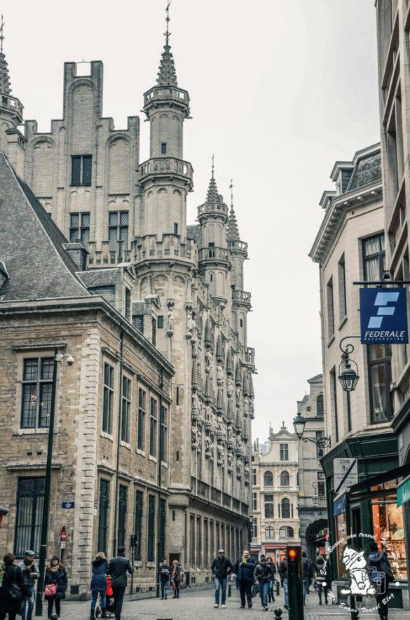 Brussels - Mr. Evans