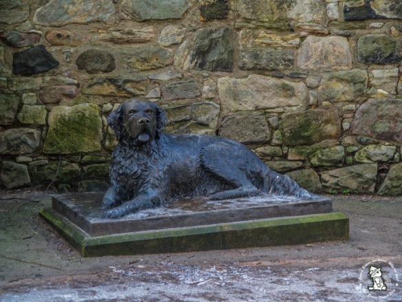Bum-the-dog-statue-edinburgh