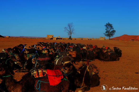marocco-travel35