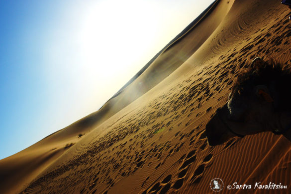 marocco-travel38