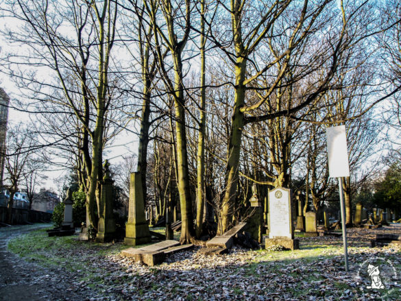 North-Merchiston-Cemetery-intro
